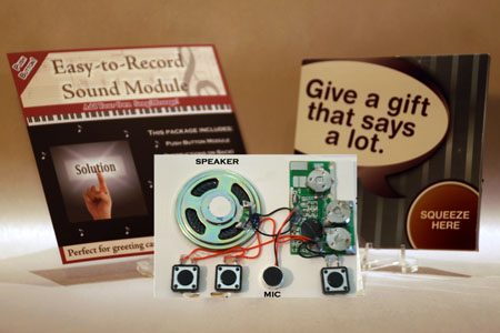 Push Button Sound Modules / Gift Tags