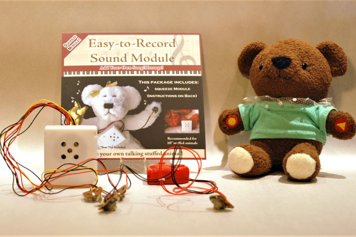 Photo Recordable Audio Module For Stuffed Animals